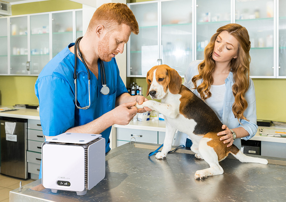 Depuratore Jonix cube veterinaria